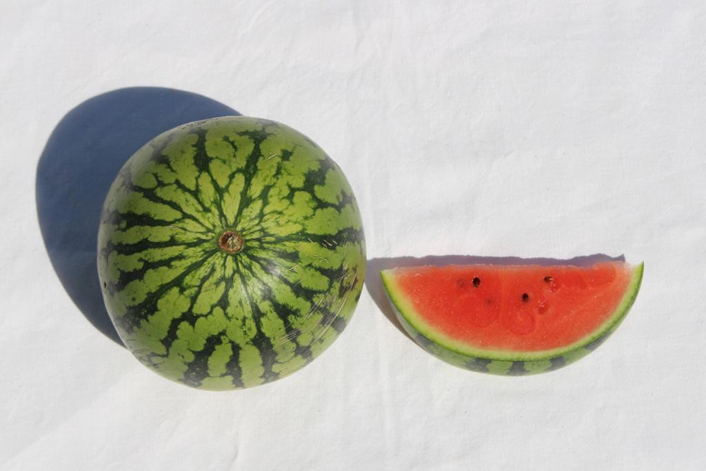 Melonen_3