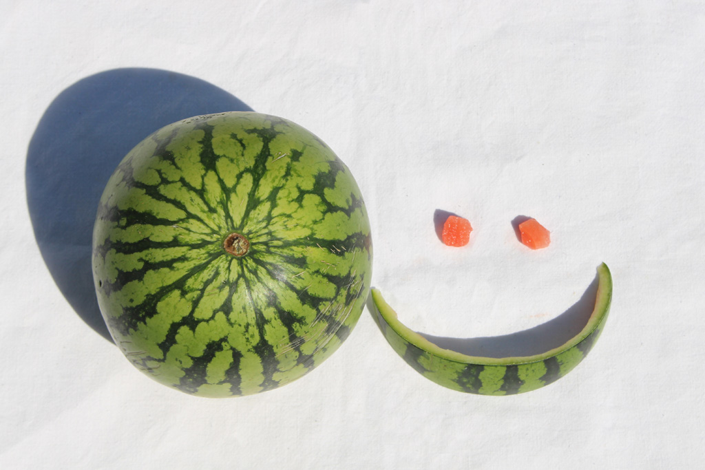Melonen_5